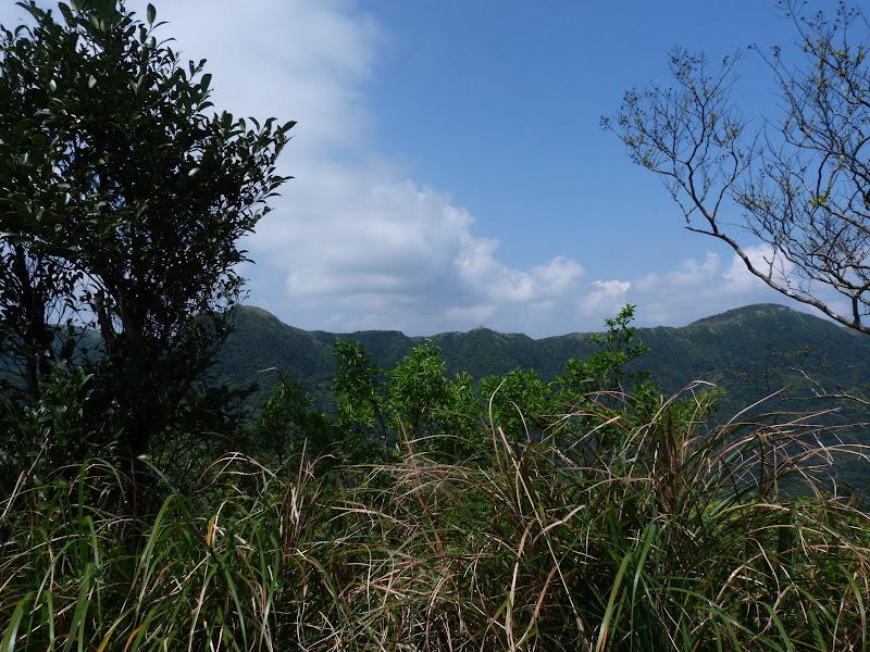TAIWAN Daxi . Randonnée Taoyan valley - P1260034.JPG