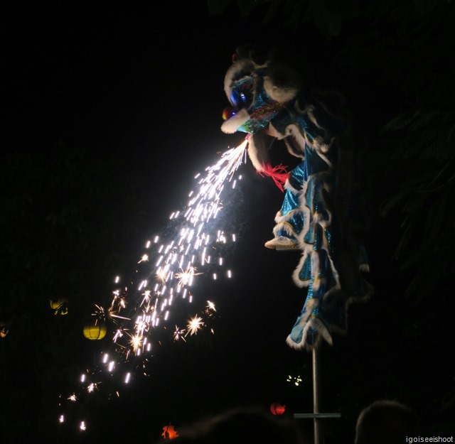 Kids performing lion dances around Hoi An old town before the Mid Autumn Festival.