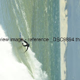 _DSC9894.thumb.jpg