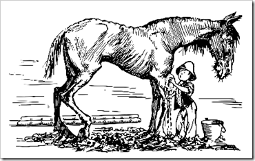 Serendipity and the Old White Plow Horse