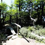 Trilha Laguna de los Tres, Parque Nacional Los Glaciares, El Chaltén, Argentina