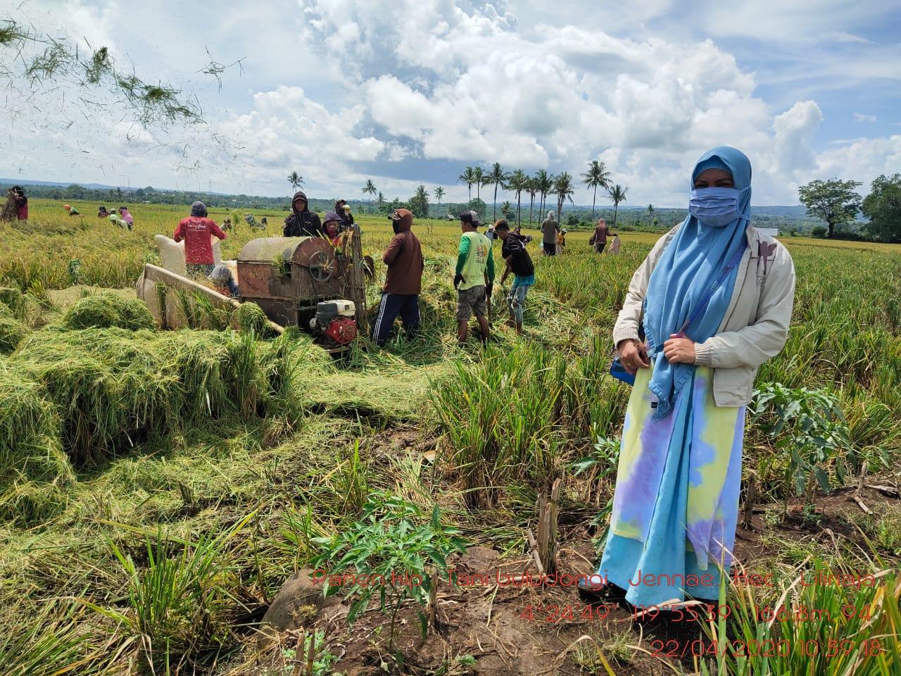Penyuluh Soppeng Tetap Dampingi Petani Sediakan Pangan, Meskipun Ditengah Ancaman Covid 19