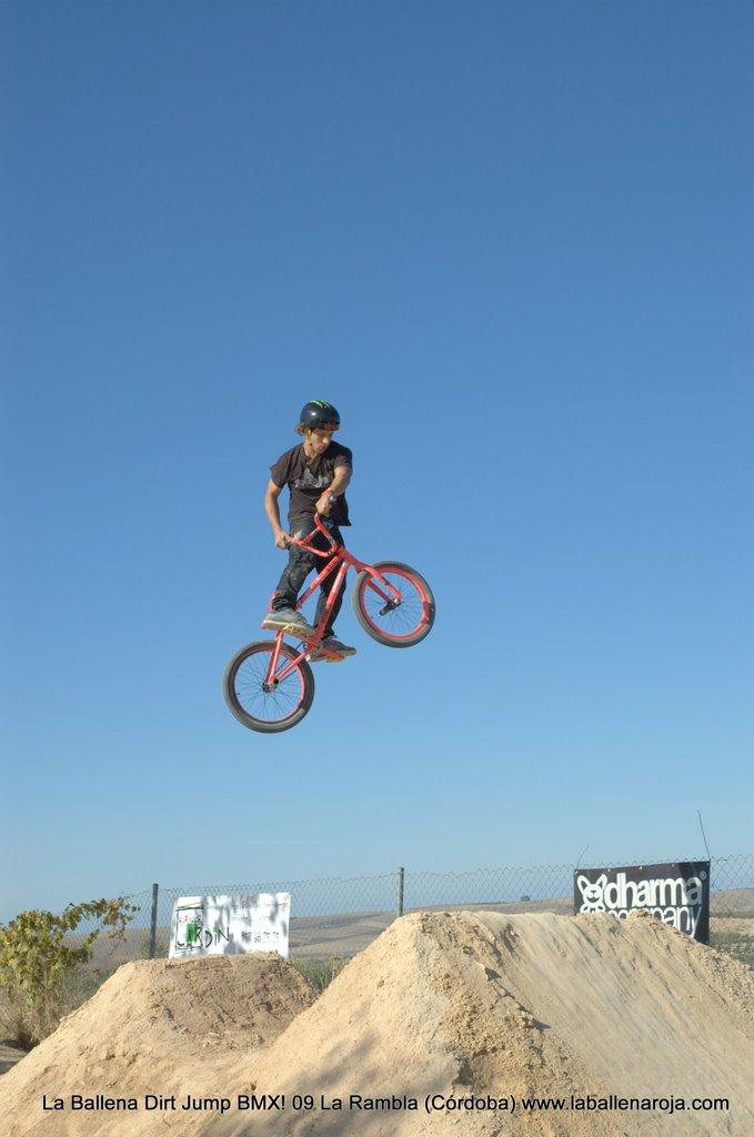 Ballena Dirt Jump BMX 2009 - BMX_09_0038.jpg