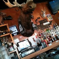 Tattooed Moose's profile photo