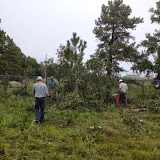 460' of Fence Line Clearing Sept 2014: Warren and Steve cutting while Erik hauls limbs away