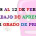 plan de trabajo semana 22 del 8 al 12 de febrero 1° grado.