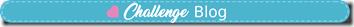 challengeblog-websitebluebanner_1_orig[8]