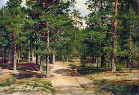 Сестрорецкий бор.1886 год.jpg