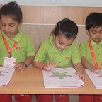 Introduction to Star Shape by Nursery Section (2016-2017) at Witty World