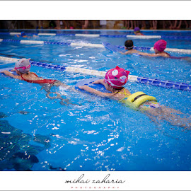 20161217-Little-Swimmers-IV-concurs-0035