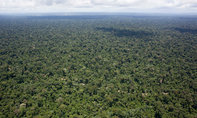 The 158,000-hectare Serra Ricardo Franco state park is supposed to be a conservation area, but farmers and loggers moved in to clear the land. Photo: Phil Clarke Hill / Corbis / Getty Images