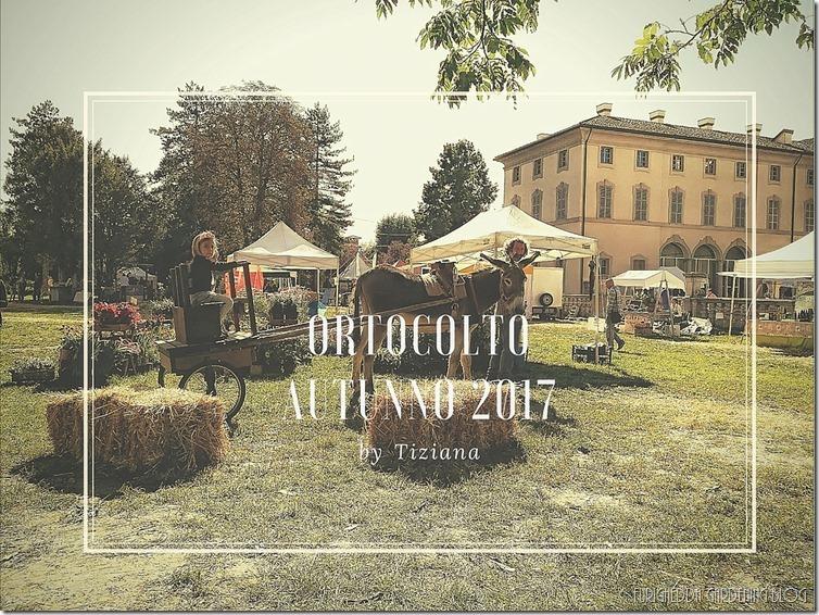 Ortocolto Autunno 2017 (5)