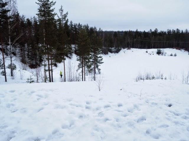 metsä, winter, snow, lumi, pulkkamäki, skiing,