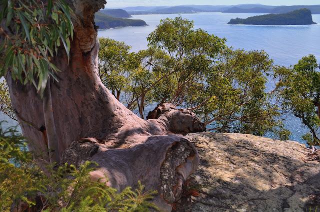 Broken Bay au nord de Sydney. 9 avril 2009. Photo : Barbara Kedzierski