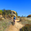 laguna_coast_wilderness_IMG_2225.jpg