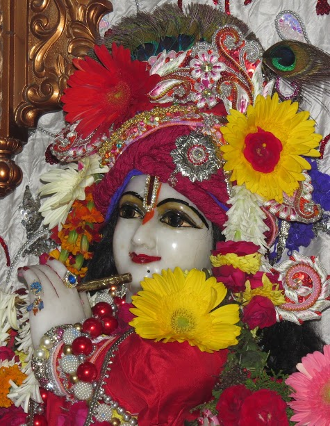 ISKCON Vallabh vidhyanagar Deity Darshan 09 jan 2017 (10)