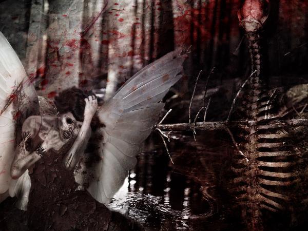 Forsaken Angel, Angels 1