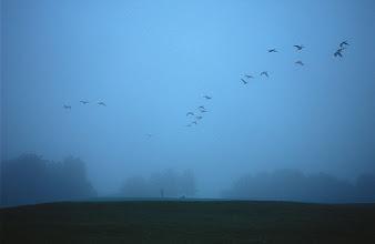 Photo: © 2008 Stanton Paddock