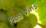 Vins Muscadet Domaine du Courtil