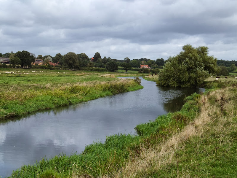 River Wensum near Bylaugh