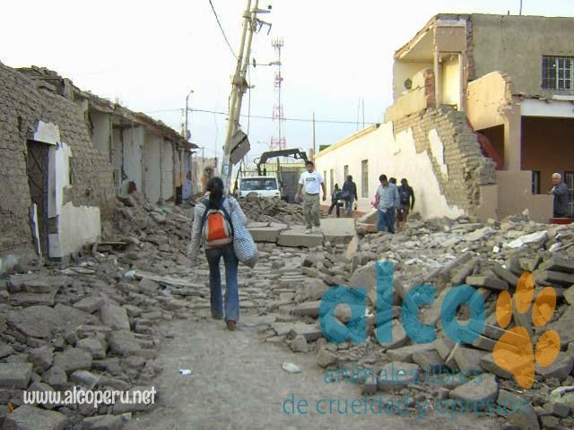 1era visita asistencia animales damnificados terremoto  Pisco 2007 (13)