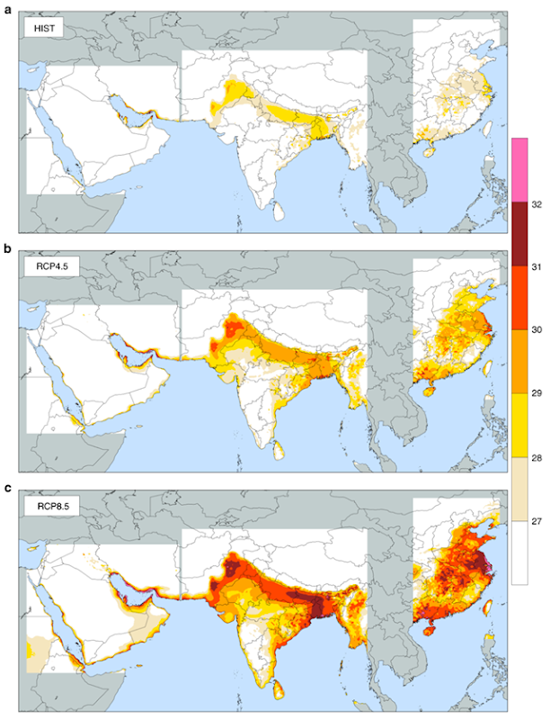 Spatial distribution of 95th percentile of daily maximum wet-bulb temperature in South Asia. TWmax (°C) from the MRCM ensemble of simulations driven by three GCMs (Southwest Asia: CCSM, MPI, NorESM, South Asia, and Eastern China: CCSM, MPI, ACCESS) for each GHG scenario: historical (a), RCP4.5 (b), and RCP8.5 (c). All simulations include irrigation. TWmax is maximum daily value from 6-h running average for each day. TWmax is presented over land areas only within the simulations domains. Land areas, outside simulations domains, are shown in gray. All ocean areas, within or outside simulations domains, are shown in blue. Graphic: Kang and Eltahir, 2018 / Nature Communications