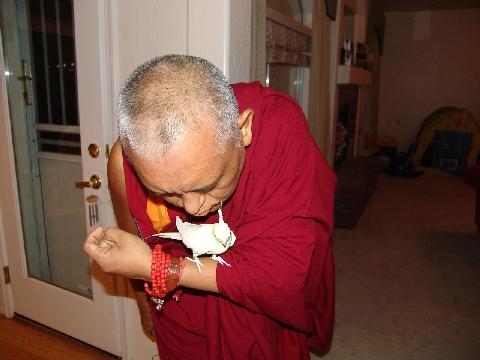 Lama Zopa Rinpoche blessing bird