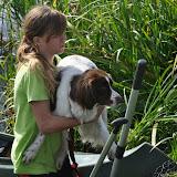 Survival voor Baas en Hond 2012 - DSC_0115.JPG