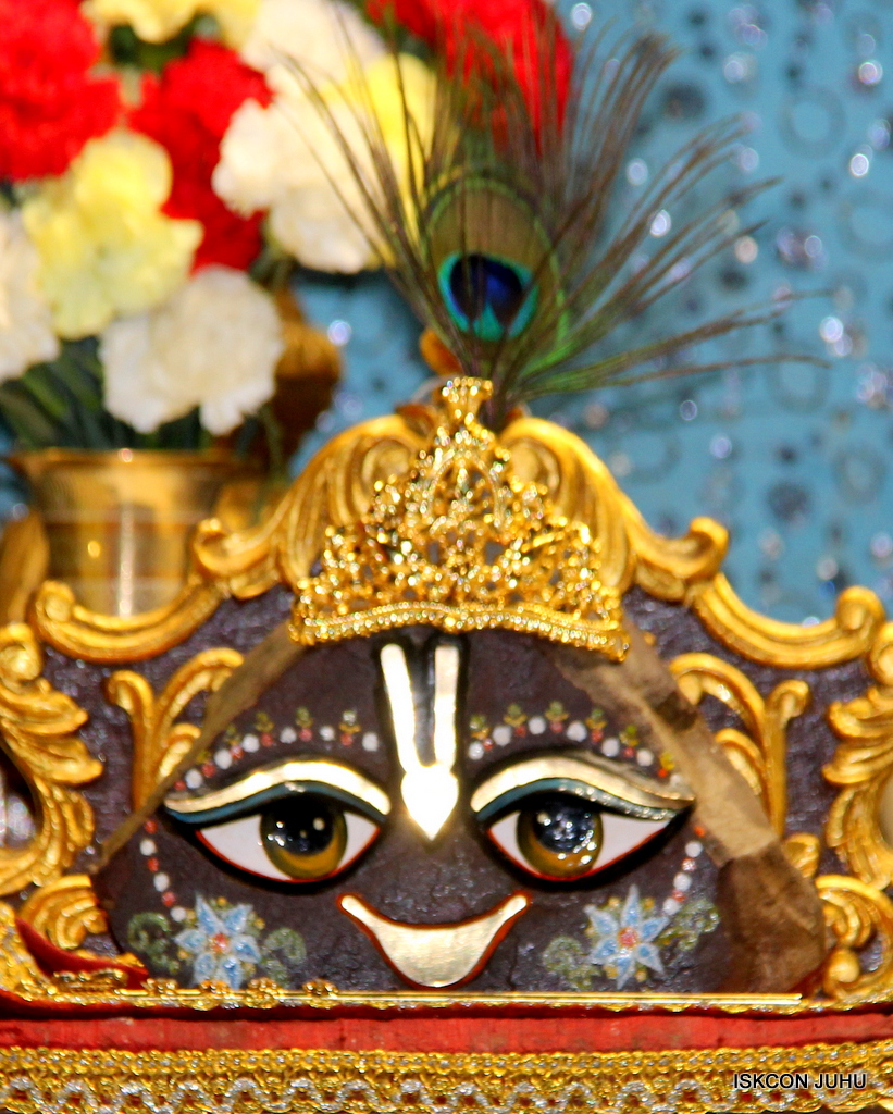 ISKCON Juhu Mangal Deity Darshan on 20th Jan 2017 (24)