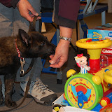 KNON pups in de stad 09-2011 - DSC_0060.JPG