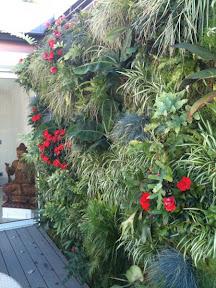 mur végétal à Monaco 2010 pour un privé