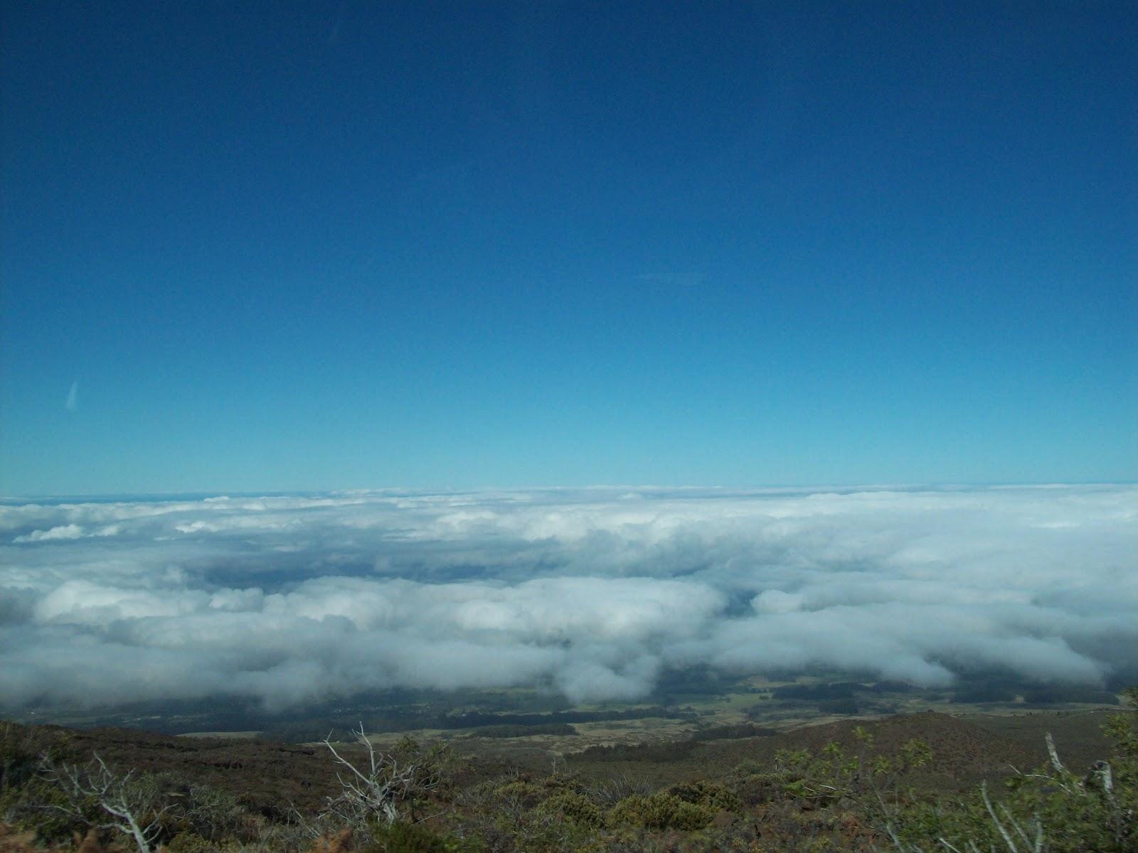 Hawaii Day 8 - 114_2058.JPG