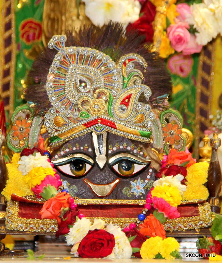 ISKCON Juhu Sringar Deity Darshan on 18th Jan 2017 (15)