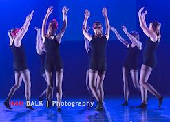 Han Balk Voorster Dansdag 2016-3691.jpg