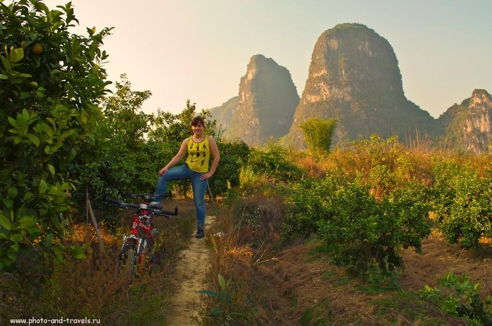 Фото. Отдых в Китае. Аренда велосипеда и прогулка по мандариновым садам в окрестностях Яншо.