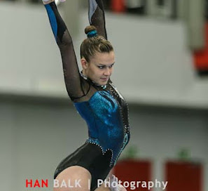 Han Balk Fantastic Gymnastics 2015-2624.jpg