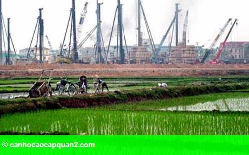 Hình 1: Chính phủ chi gần 500 tỷ đồng giữ đất lúa