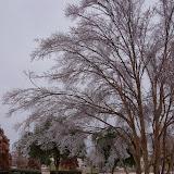 12-06-13 DFW Ice Storm - IMGP0446.JPG