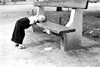 Látogató kisfiú a budapesti állatkertben, 1957 (Fotó: Fortepan)