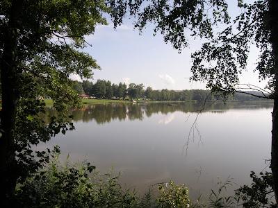 Pohled na Rybník Brodský z hráze rybníka