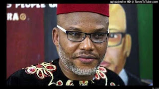 The Godfather Biafra