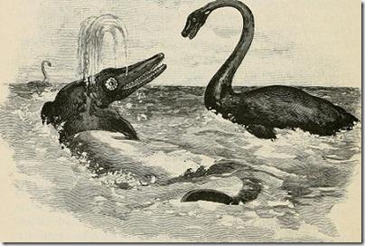 Essex Serpent 4