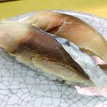mackerel sushi at TENKASUSHI in Shibuya in Tokyo, Tokyo, Japan