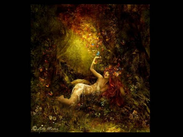 In The Bedroom Of Forest, Magic Beauties 3