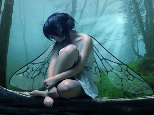 Blue Fairy In The Sun Lights, Fairies Girls