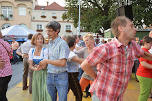Stadtfest Herzogenburg 2014_ (146)