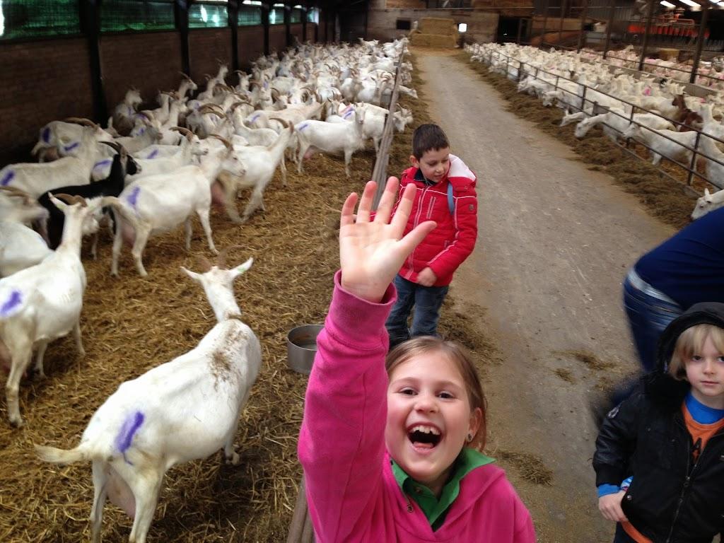 Bevers & Welpen - Boerderij bezoek - 2014-03-22%2B10.46.27-2.jpg