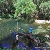 04-04-12 Hillsborough River State Park - IMGP9677.JPG