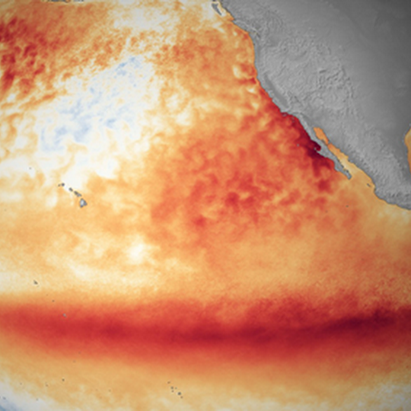 EL NIÑO IS OVER, BUT HAS LEFT ITS MARK ACROSS THE WORLD