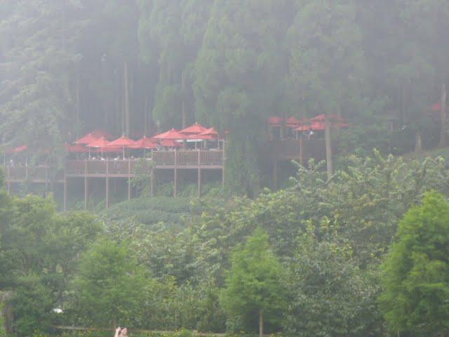 TAIWAN.Hsinchu et une minuscule partie du parc national de Sheipa, l empire du brouillard... - P1070837.JPG
